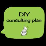 diy-consultingplan