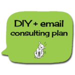 diyemail-consultingplan